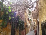 Old Street in Chania